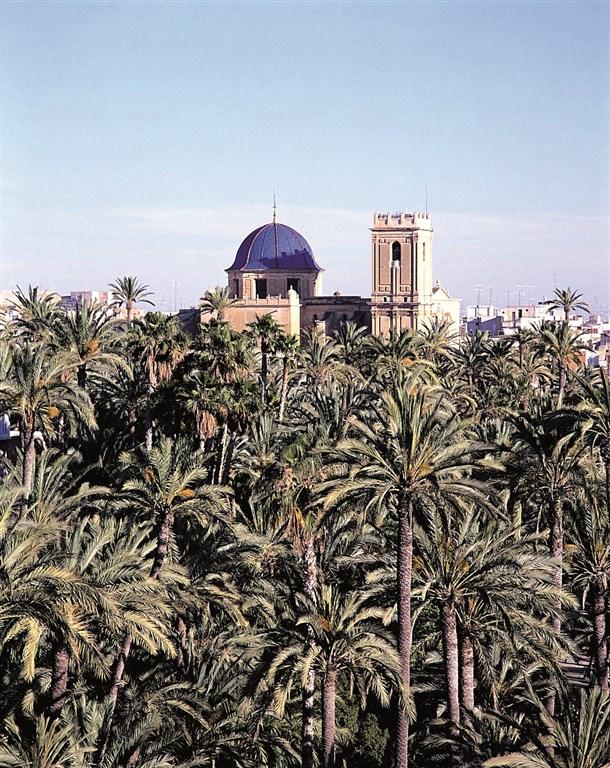 Krásy Andalusie - Elche