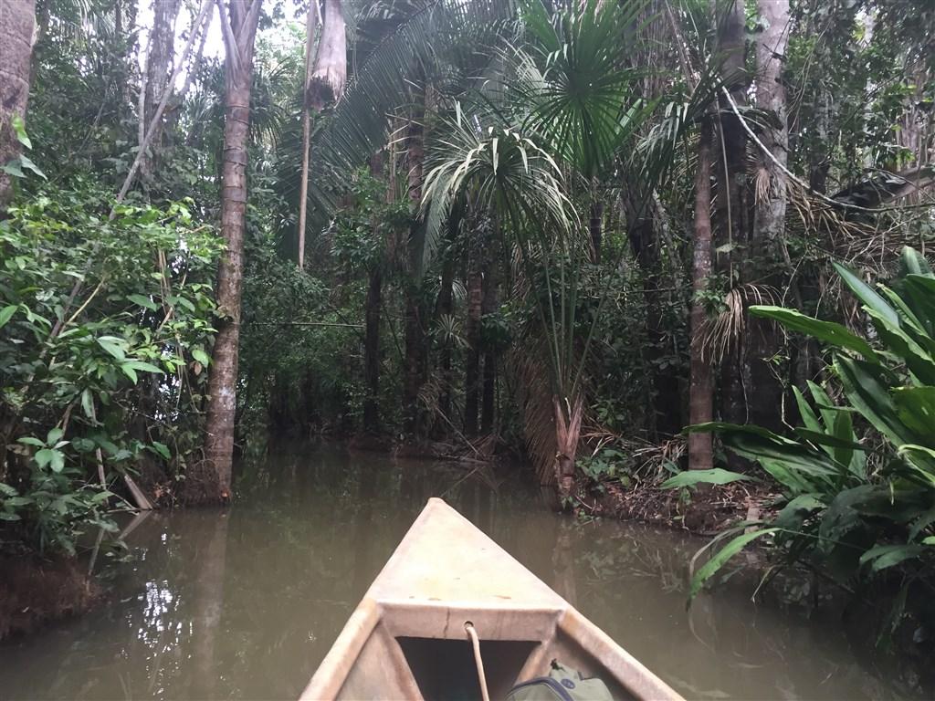 Amazonie - výlet na jezero Sandoval