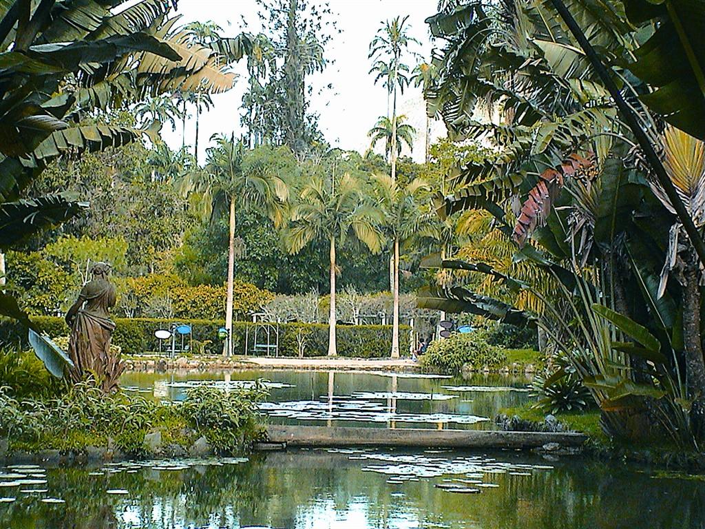 Rio de Janeiro - botanická zahrada